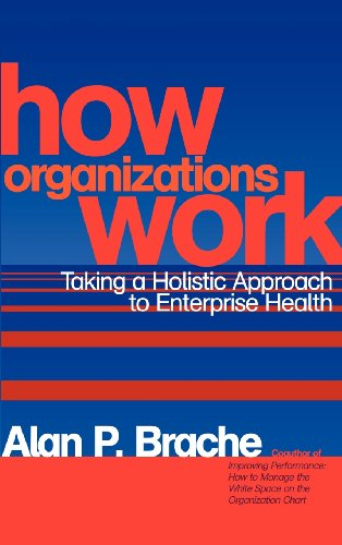 9780471200338: How Organizations Work: Taking a Holistic Approach to Enterprise Health