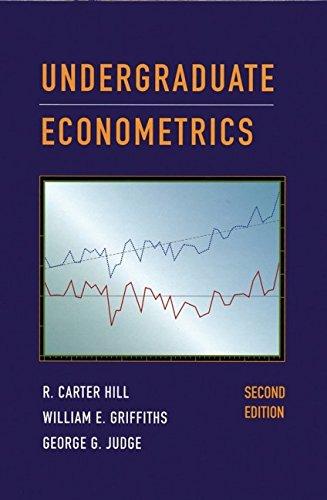 9780471331841: Undergraduate Econometrics