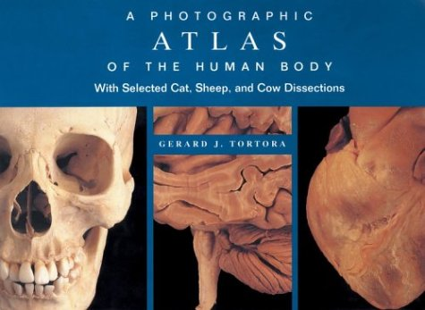 9780471374879: A Photographic Atlas of the Human Body: With Selected Cat, Sheep and Cow Dissections
