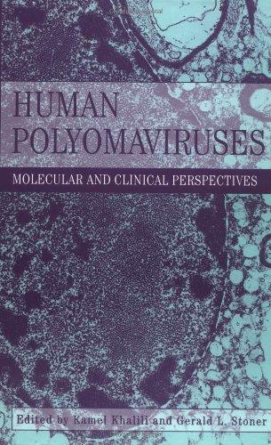 9780471390091: Human Polyomaviruses - Molecular and Clinical ectives