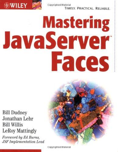 9780471462071: Mastering JavaServer Faces (Java)