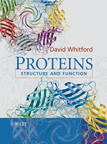 9780471498933: Proteins: Structure and Function