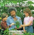 Looking at Plants: Suzuki, David