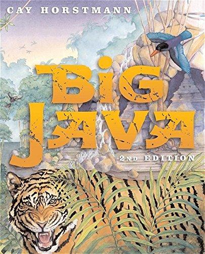 9780471697039: Big Java