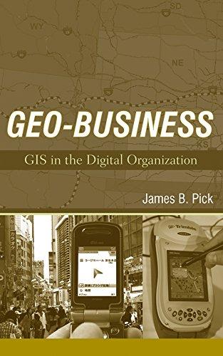 Geo-business: Gis in the Digital Organization: Pick, James B./