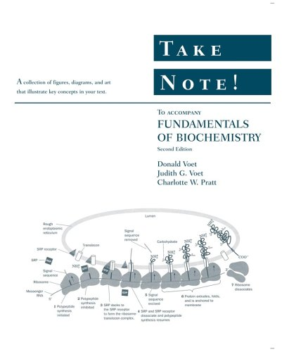 9780471739302: Take Note! to accompany Fundamentals of Biochemistry, 2nd Edition