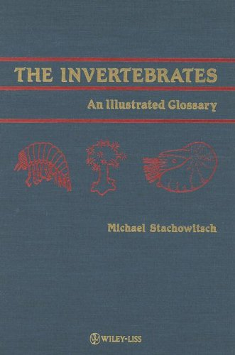 9780471832942: The Invertebrates: An Illustrated Glossary