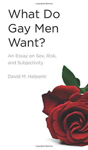 9780472033652: What Do Gay Men Want?: An Essay on Sex, Risk, and Subjectivity