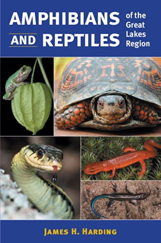 9780472066285: Amphibians and Reptiles of the Great Lakes Region (Great Lakes Environment)