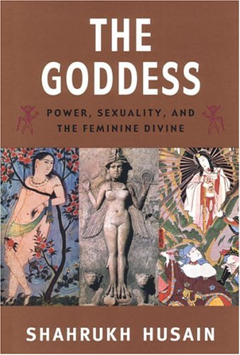 9780472089345: The Goddess: Power, Sexuality, and the Feminine Divine