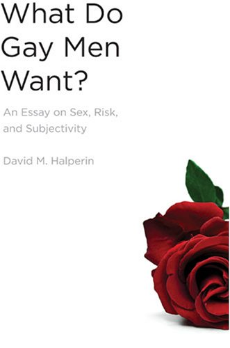 9780472116225: What Do Gay Men Want?: An Essay on Sex, Risk, and Subjectivity