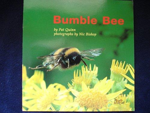 Bumble Bee (Ready to Read) - Pat Quinn; Pat Quinn