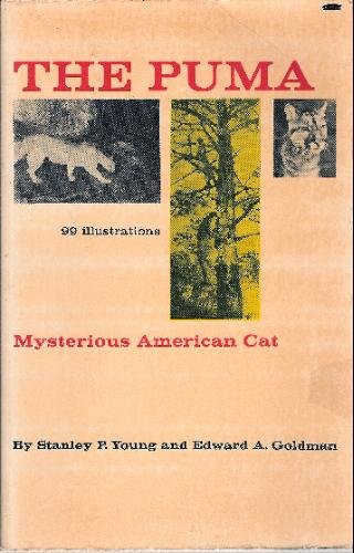 The puma, mysterious American cat. Part I: Young, Stanley Paul
