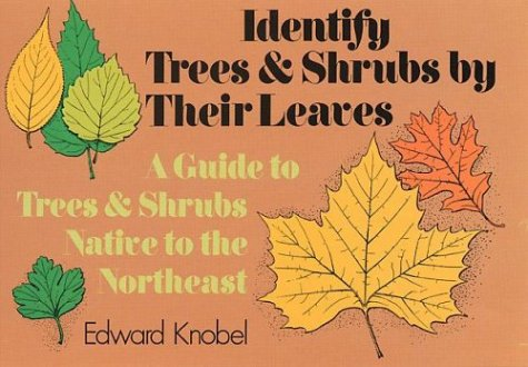 9780486228969: Identify Trees and Shrubs by Their Leaves