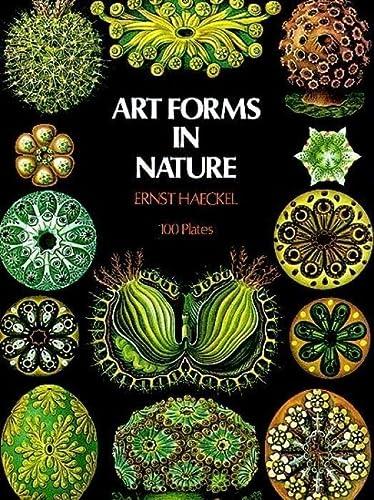art forms in nature Art Forms in Nature. 2 Plates. von Haeckel, Ernst:: (2