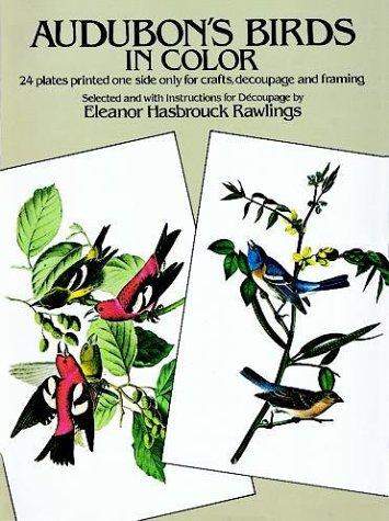 9780486234922: Audubon's Birds in Color for Decoupage