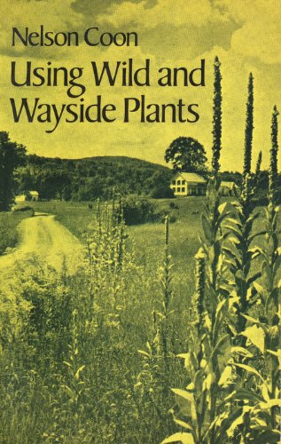 9780486239361: Using Wild and Wayside Plants