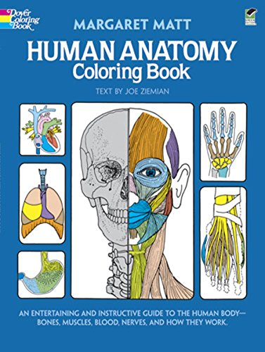 9780486241388: Human Anatomy Coloring Book
