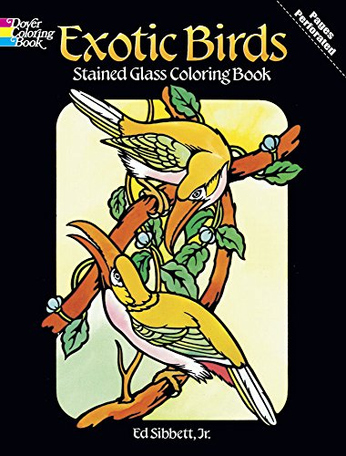 Exotic Birds Stained Glass Colouring Book Dover Sibbett Jr Ed