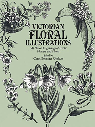 9780486248226: Victorian Floral Illustrations: 344 Wood Engravings of Exotic Flowers and Plants (Dover Pictorial Archive)