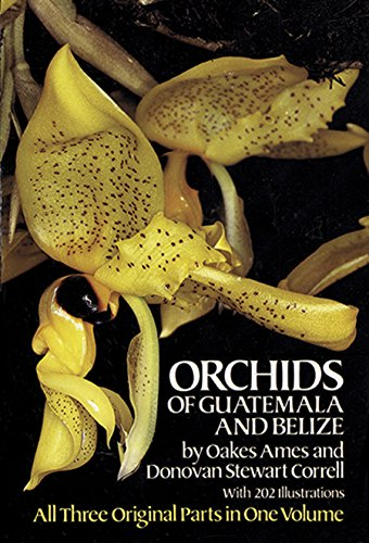 9780486248349: Orchids of Guatemala and Belize