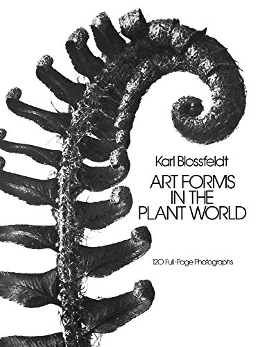 9780486249902: Art Forms in the Plant World (Dover Pictorial Archive)