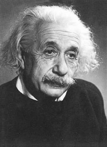 9780486261973: Einstein Notebook (Decorative Notebooks)