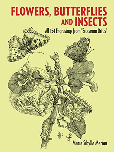 9780486266367: Flowers, Butterflies and Insects: All 154 Engravings from