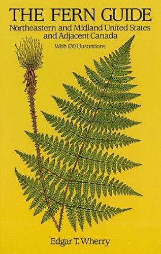 9780486284965: The Fern Guide: Northeastern and Midland United States and Adjacent Canada