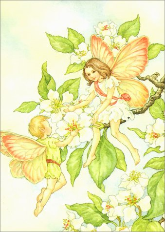 Fairies Notebook (Decorative Notebooks): May