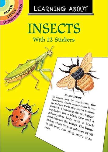 Learning About Insects (Dover Little Activity Books): Jan Sovak