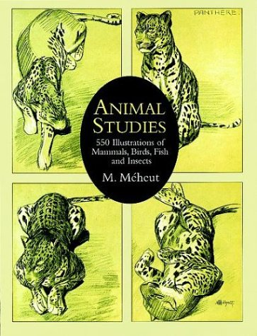 Animal Studies: 550 Illustrations of Mammals, Birds,: Méheut, M.