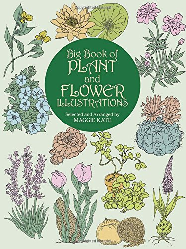 9780486409467: Big Book of Plant and Flower Illustrations (Dover Pictorial Archive)