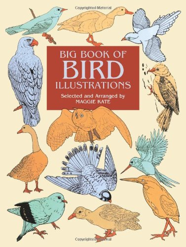 9780486412252: Big Book of Bird Illustrations (Dover pictorial archive series)