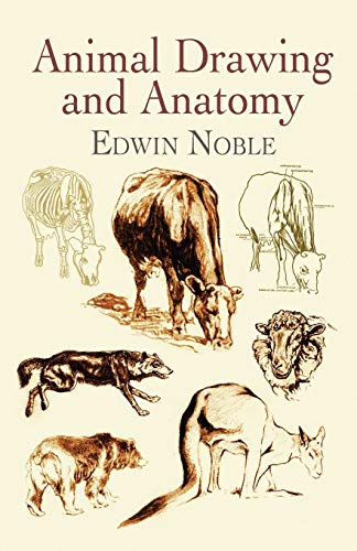 9780486423128: Animal Drawing and Anatomy (Dover Art Instruction)