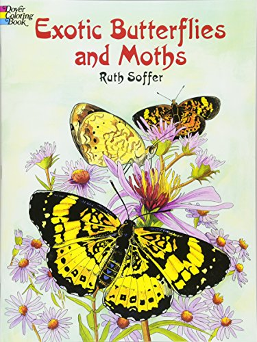 9780486423814: Exotic Butterflies and Moths (Dover Nature Coloring Book)