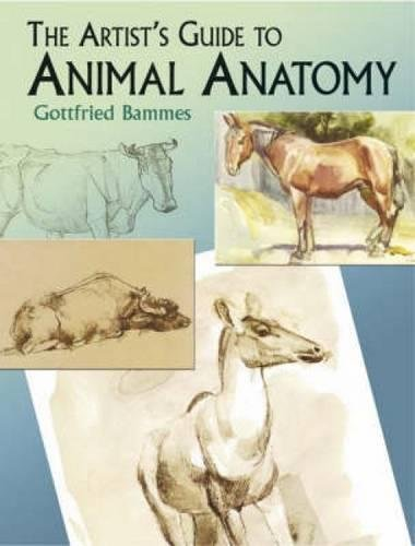 The Artist's Guide to Animal Anatomy (Dover: Gottfried Bammes