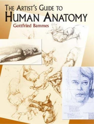 The Artist's Guide to Human Anatomy (Dover: Bammes, Gottfried