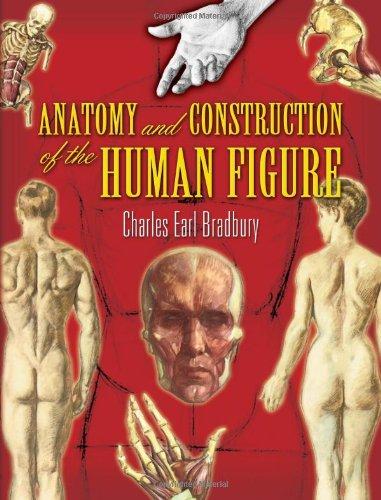 Anatomy and Construction of the Human Figure: Bradbury, Charles Earl;