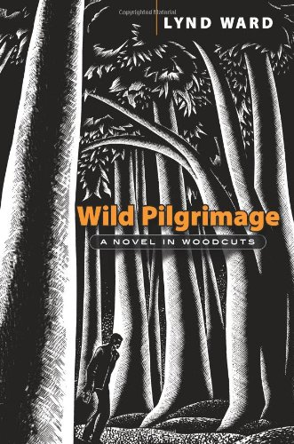 9780486465838: Wild Pilgrimage: A Novel in Woodcuts (Dover Fine Art, History of Art)