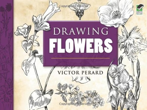 9780486469096: Drawing Flowers (Dover Art Instruction)