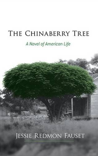 The Chinaberry Tree: A Novel of American: Fauset, Jessie