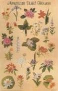 9780486592923: American Wildflowers Poster (Posters)