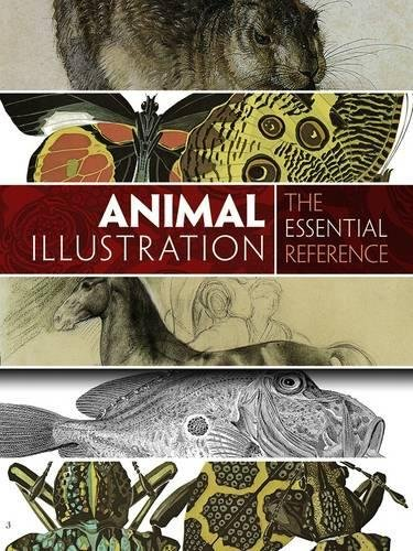 9780486799865: Animal Illustration: The Essential Reference