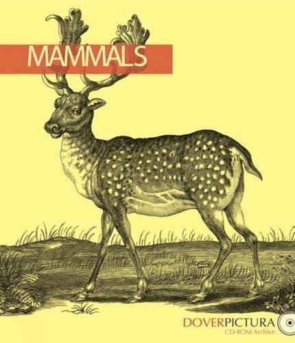 9780486996387: Mammals (Dover Pictura Electronic Clip Art)