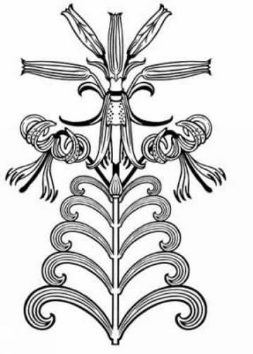 9780486996912: Art Nouveau Floral Designs: 227 Permission-Free Designs