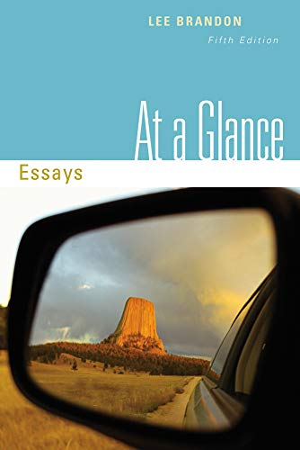 9780495906308: At a Glance: Essays (Basic Writing)
