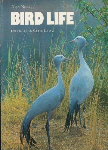 9780500011218: Bird Life