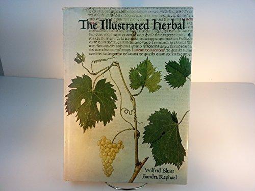 The Illustrated Herbal: Blunt, Wilfrid; Raphael, Sandra