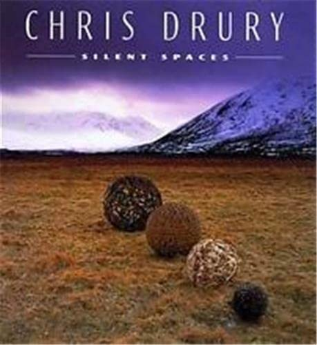 9780500092767: Chris Drury Silent Spaces